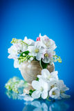 Spring bouquet of lily of the valley and apple blossom. On a blue background Royalty Free Stock Image