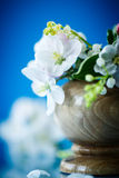 Spring bouquet of lily of the valley and apple blossom Stock Image