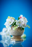 Spring bouquet of lily of the valley and apple blossom Stock Photo
