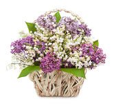 Spring bouquet. Lily of the valley and lilac in a basket isolate Stock Images