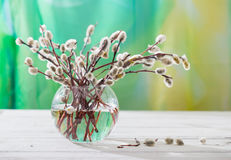Spring bouquet for palm sunday Stock Photo