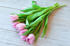 Spring bouquet of pink tulips Stock Images