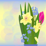 Spring bouquet vector Royalty Free Stock Photo