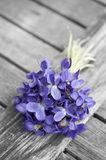 Spring bouquet of violets Royalty Free Stock Image