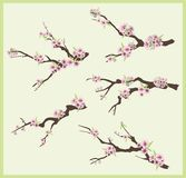 Spring branch design set Stock Image