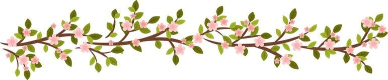 Spring branch Stock Photos