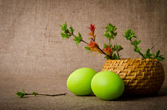 Spring branches in a basket with Easter eggs Royalty Free Stock Photos