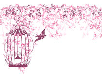 Spring branches and bird cage Stock Photo
