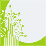 Spring branches card Stock Image