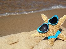 starfish on beach with sunglasses and bikini Royalty Free Stock Images