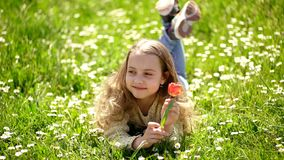 Spring break concept. Child enjoy spring sunny day while lying at meadow with daisy flowers. Girl on smiling face holds stock footage