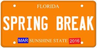Spring Break Florida License Plate royalty free illustration