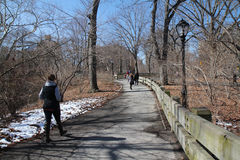 Walking in Central Park. During Spring Break week-end, first sunny days in Central Park Royalty Free Stock Photo