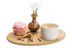 Spring breakfast with crocus Royalty Free Stock Image