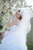 Spring bride portrait Royalty Free Stock Images