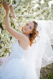 Spring bride portrait Stock Photography