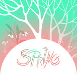 Spring bright vector illustration. March, flowering snowdrops in a snowy forest. Branches of trees and flowers. Semicircle space for text. Elements design for Royalty Free Stock Photography