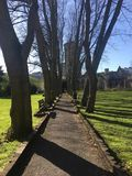 Temple Gardens, Bristol, United Kingdom. Spring in Bristol, United Kingdom. Sunny day with blue sky, green nature in Temple Gardens royalty free stock image