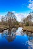 Spring Brook, blue sky, on the banks of alder. Grass begins to break, the April landscape Royalty Free Stock Photo
