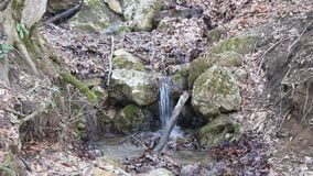 Spring brook. Cascading on a steep slope stock video footage