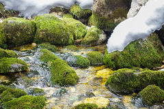 Spring Brook Thaw Royalty Free Stock Photo