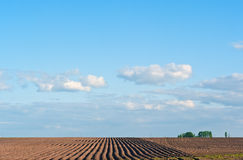 The spring brown ploughed field Royalty Free Stock Photo