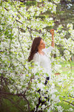 Spring brunette girl standing outdoor in blooming trees. Beautif Royalty Free Stock Photos