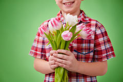 Spring bunch Royalty Free Stock Images