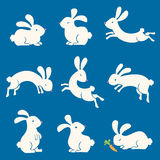 Spring Bunnies Stock Photo
