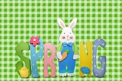 Spring bunny Stock Photos