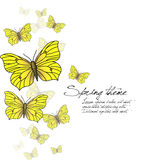 Spring butterflies -  Stock Photos