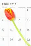 Spring calendar Stock Images