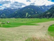 Austria - Alpine Meadow stock image