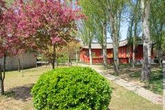 Spring campus Royalty Free Stock Photos