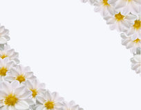 Free Spring Card Stock Photography - 4856382