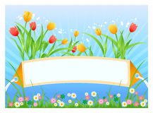 Spring card. Vector illustration of Spring time card with tulips and flowers Royalty Free Stock Photography