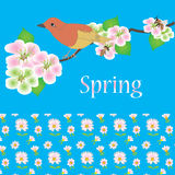 Spring card with bird, bee and flowers Stock Image