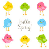 Spring card with birds Stock Image