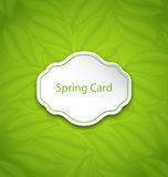 Spring Card on Eco Pattern with Green Leaves Royalty Free Stock Photos