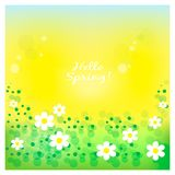 Spring card with flowers on the yellow background. EPS 10 Stock Images