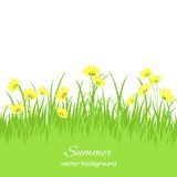 Spring card with grass and flowers Stock Photos