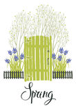 Spring card with the green door of garden and blooming irises. C Stock Photo