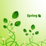 Spring card with green leaves and flowers Royalty Free Stock Image