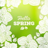 Spring card with orchid flowers and blurred background Royalty Free Stock Images