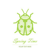 Spring card with an unusual beetle Royalty Free Stock Photo