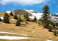Spring in Carpathians. Spring is coming in Maramures mountains (Carpathian range Royalty Free Stock Photos