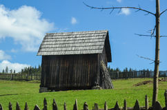 Spring in the Carpathians II. Landscape in the Carpathians Mountains Stock Images