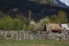 Spring on the Carretera Austral royalty free stock photo