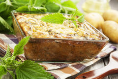 Spring casserole with nettle Stock Photography