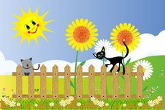 Spring and cats, Royalty Free Stock Photo